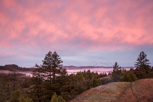 Mendocino Sunrise, coastal range, northern california, redwood country, pink sky, clouds Mendocino county, landscape